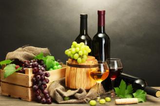 Czech wine festivals