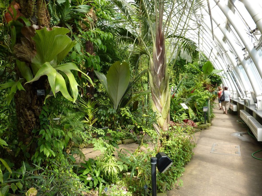 The tropical greenhouse Fata Morgana