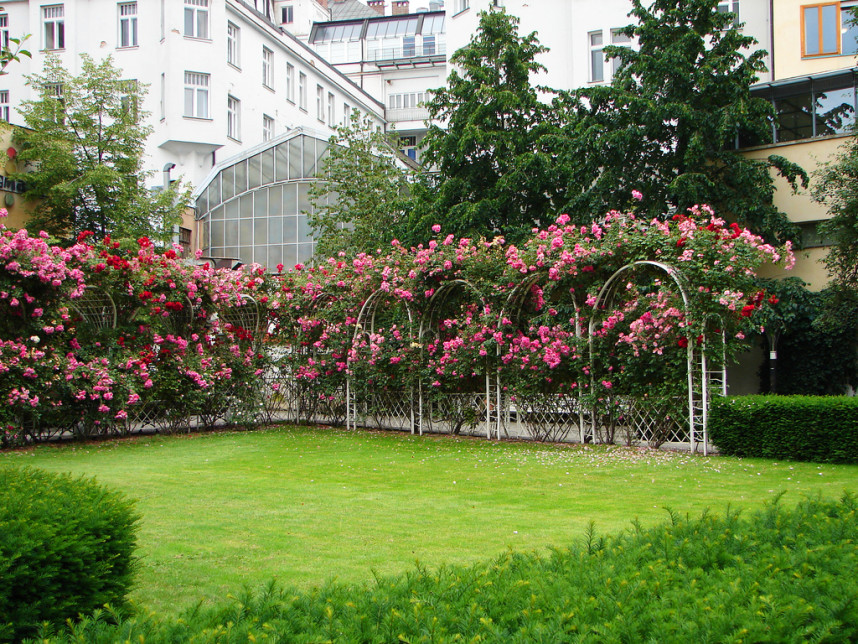Botanical Garden, Prague