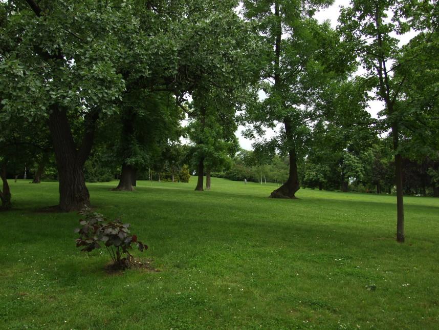 Rieger Gardens