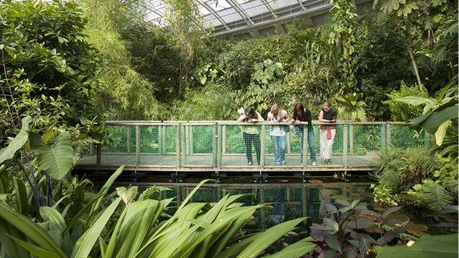Botanical Garden in Prague