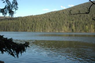 Sumava Lakes