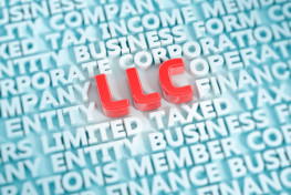Establishing Limited Liability Company